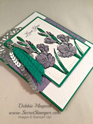 By Debbie Mageed, Gift of Love, Blooms & Wishes, Stampin Up