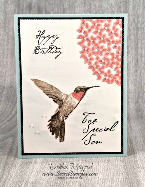 By Debbie Mageed, Picture Perfect, Thoughtful Branches, Masculine, Stampin Up