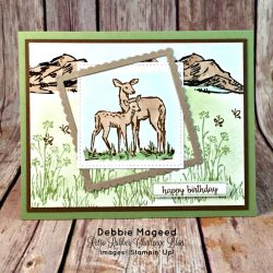 By Debbie Mageed, In the Meadow, Happy Birthday Gorgeous, Blessings from Heaven, Best of Birthdays, Masculine, Stampin Up