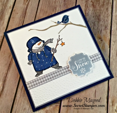 By Debbie Mageed, Swirly Bird, Best of Snow, Snow Place, Seasonal Layers Thinlits, Winter, Stampin Up