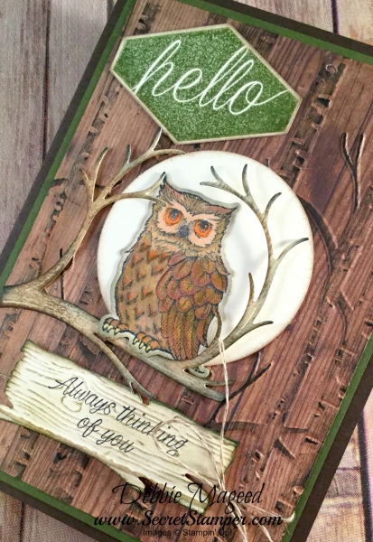 Wonderful Autumn Card Featuring #StillNight, #AccentedBlooms, #Masculine, #NIghtOwl, #SecretsToStamping, #StampinUp