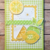 Fresh All Occasion Card Featuring Lemon Zest Stamp Set by Stampin