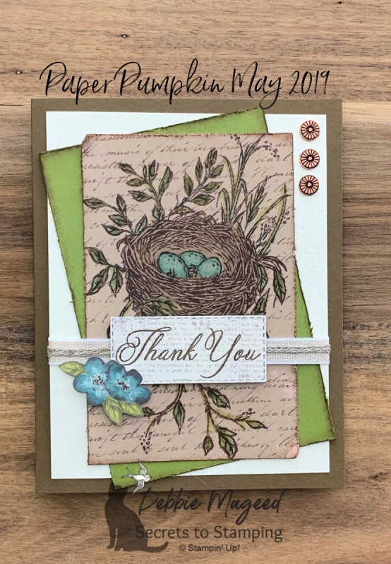 Alternative Paper Pumpkin Card Featuring May 2019 Paper Pumpkin Kit by Stampin' Up!
