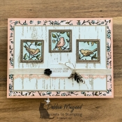 All Occasion Card Featuring Free As A Bird by Stampin