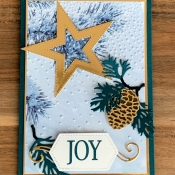 Winter Holiday Card featuring So Many Stars and Stitched Stars Dies by Stampin