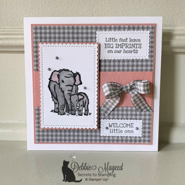 Sweet Baby Card Featuring Wildly Happy Stamp Set by Stampin' Up!